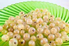 Białe jagody na zieleń talerzu Zdjęcia Stock