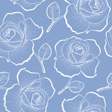 Białe kontur róże na błękitnym bezszwowym wzorze Obraz Royalty Free