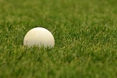 Białe lacrosse piłki na zielenieją pole fotografia stock