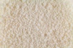 Białe piłki organicznie początek zamykają w górę całej fotografii w zdjęcia stock