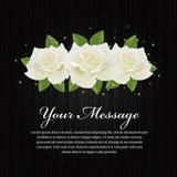 Białe róże i liść na czarnego drewnianego tła wektorowym projekcie Fotografia Royalty Free