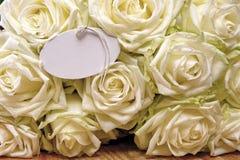 białe róże karty poboru ślub ilustracyjny Obrazy Royalty Free