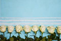 Białe róże lokalizować w linii na błękitnym tle obraz stock
