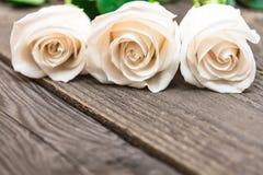 Białe róże na ciemnym drewnianym tle Kobieta dzień, walentynka Obraz Stock