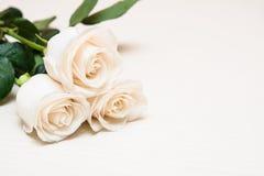 Białe róże na lekkim drewnianym tle Kobieta dzień, Valentin Obrazy Stock