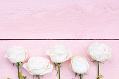 Białe róże na menchii Zdjęcia Royalty Free