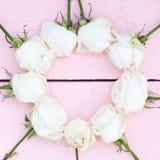 Białe róże na różowym drewnianym tle Zdjęcia Stock