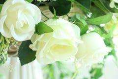 Białe róże sztuczne Zdjęcie Royalty Free
