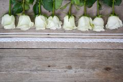 Białe róże z koronkami lokalizować w linii na drewnianym tle obraz stock