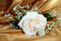 białe złoto Fotografia Stock
