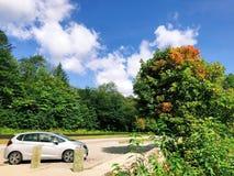 Białego Halnego lasu państwowego sceniczne przejażdżki obraz stock