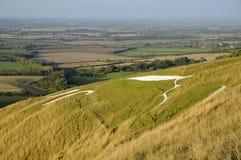 Białego konia wzgórze Zdjęcie Stock