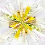 Białego kwiatu centrum kolażu Geometryczny wzór Obraz Stock
