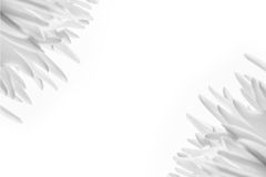 Białego kwiatu tło Obraz Royalty Free