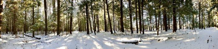 Białego pamiątkowego konserwacja terenu panoramiczny widok zdjęcie royalty free