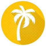 Białego wektorowego drzewka palmowego round płaska ikona Zdjęcie Stock