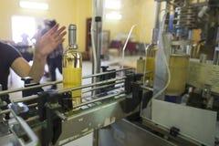 Białego wina butelki przylepiać etykietkę w wytwórnii win Obrazy Stock