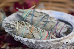 Białej mędrzec Smudge kije w Seashell Zdjęcia Royalty Free