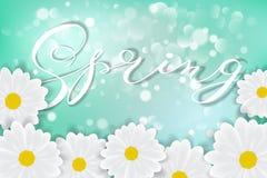 Białej stokrotki chamomile kwitnie na błękitnym pogodnym nieba tle z bokeh wektoru ilustracją ilustracji