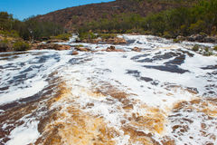 Białej wody Perth Łabędzia Rzeczna zachodnia australia Fotografia Royalty Free