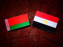 Białoruś flaga z egipcjanin flaga na drzewnym fiszorku Zdjęcia Stock