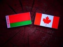 Białoruś flaga z kanadyjczyk flaga na drzewnym fiszorku odizolowywającym obrazy royalty free