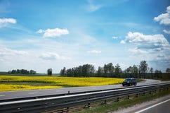 Białoruś Kolor żółty pole Gwałta dorośnięcie w Białoruś Maj 21, 2017 Obrazy Stock