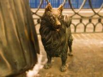 Białoruś Minsk, Styczeń, - 07, 2019: Rzeźba mały pies blisko Komarovsky rynku w pełnym przyroscie zdjęcia royalty free