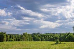 Białoruskie łąki fotografia stock