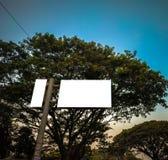 biały ścinku egzamin próbny dla w górę reklamy pod ogromnym wysokim drzewem zdjęcia stock