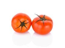 biały świezi tło pomidory Zdjęcia Stock