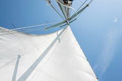 Biały żagiel żeglowanie łódź przeciw niebu Żagle rzeczny żeglowanie zdjęcie royalty free