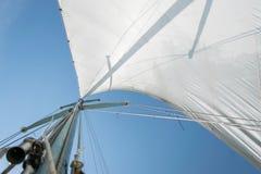 Biały żagiel żeglowanie łódź przeciw niebu Żagle rzeczny żeglowanie obrazy royalty free