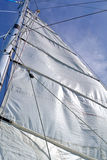 Biały żagiel na niebieskim niebie Fotografia Royalty Free