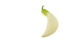 Biały Agasta, Tajlandzki warzywo odizolowywa na białym tle Zdjęcia Stock