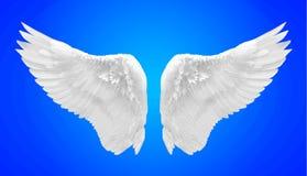 Biały anioła skrzydło odizolowywający fotografia stock