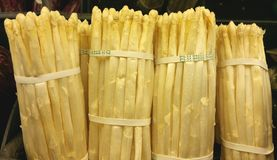 Biały asparagus Zdjęcie Stock