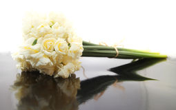 Biały Barwiony Erlicheer Daffodil Zdjęcia Stock