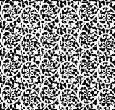 Biały bezszwowy koronkowy kwiecisty wzór Obrazy Royalty Free