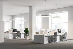 Biały biurowy kąt, kolumny, komputerowi biurka ilustracja wektor