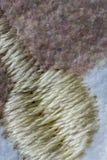 Biały, brown i żółty ścieg wełny tkaniny wzór makro-, Obrazy Royalty Free