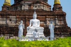 Biały Buddha na pagodowym tle fotografia stock