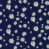 Biały chamomile kwitnie bezszwowego wektorowego błękita wzór ilustracja wektor