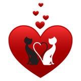 biały czarny koty royalty ilustracja