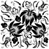 biały czarny tło kwiaty Fotografia Royalty Free