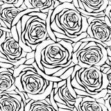 biały czarny tło róże royalty ilustracja