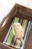 Biały czekoladowy lody na kiju Zdjęcia Stock
