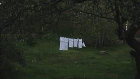 Biały czysty pralniany obwieszenie na clothesline zbiory