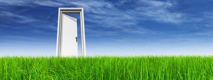 Biały drzwi w trawie z nieba tłem Zdjęcie Stock