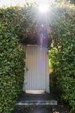 Biały drzwi zaczarowany las gubjący w krzakach obraz stock